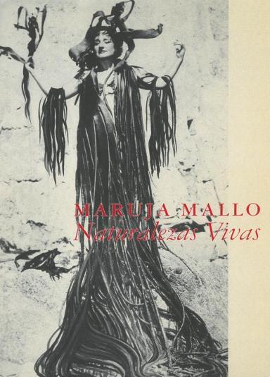 Maruja Mallo: Naturalezas vivas, 1941-1944